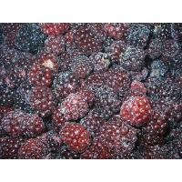 China Frozen FruitsIQF blackberry A grade on sale