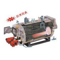 Quality WNS series double-flue full-auto oiland gas hot-water boiler for sale
