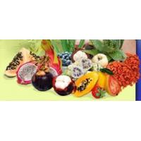 China Exotic Fruits- Juices,Concentrates, Extracts, Puree, IQF on sale