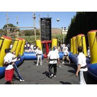 Quality inflatable ball game for sale