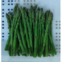 China Frozen Vegetables NAME: Frozen Green Asparagus spears whole on sale