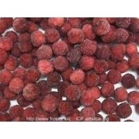 Quality IQF Frozen Fruits IQF arbutus/yumberry/yangmei for sale