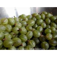 Buy cheap IQF Frozen Berries IQF gooseberries from wholesalers