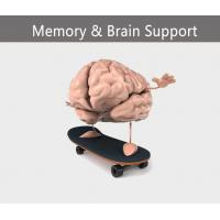 Buy cheap Memory & Brain Support from wholesalers