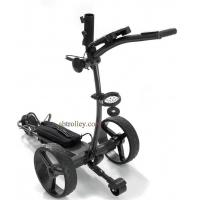 Quality X2R lithium remote golf buggy for sale