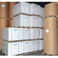 Buy cheap Coated Paper from wholesalers