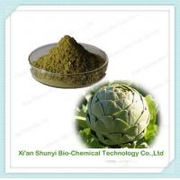 Quality Artichoke Extract | Pure Artichoke Extract| Cynarin for sale