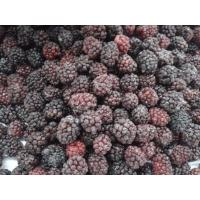 Quality Frozen fruit Frozen Blackberry for sale