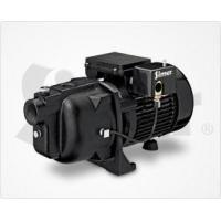 Quality 2210C | 1 HP Cast Iron Shallow Well Jet Pump for sale