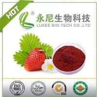 China Strawberry Fruit Flavour Powder on sale