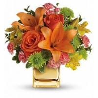 China Teleflora's Tropical Punch Bouquet [TEV31-8A] on sale