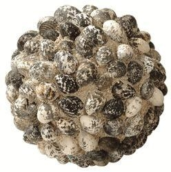 """Buy Classic Nautical Decor 5"""" Seashell Ball, Multitoned Shells at wholesale prices"""