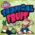 Buy cheap Tropical Fruit Gumballs 850 Count from wholesalers