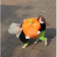 Quality Pumkin Costumes for Dog for sale