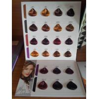 Buy cheap Two Folded Hair Color Chart Swatch Book from wholesalers