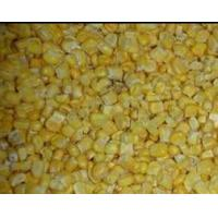 China IQF Frozen Sweet Corn on sale