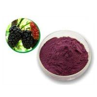 Mulberry Leaf P.E mulberry leaf extract mulberry leaf powder