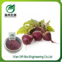 China Beet Root Extract, Pure Natural Organic Red Beet Root Powder, High Quality Beet Juice Powder on sale