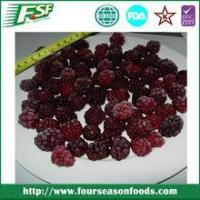 China Frozen whole blackberry, china blackberry price on sale