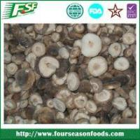 China Hot Sale All types Of Mushrooms on sale