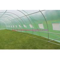 Buy cheap Garden Polytunnels greenhouses 3m, 4m ,6m and 8m with Steel Frames and Re-inforced Covers from wholesalers