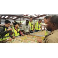 Kamoa Copper Smelting Project, D. R. Congo for sale