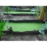 Buy cheap Azolla Bed from wholesalers