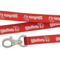 Quality Badge Lanyards for sale