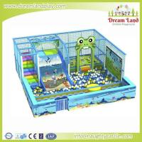 Quality DL-300 Indoor playground for sale