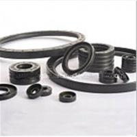 Quality Double Lips Oil Seal Tc NBR Oil Seal Manufacturer for sale