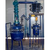 China Pilot glass-lined reactor on sale